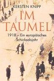 Im Taumel (eBook, ePUB)