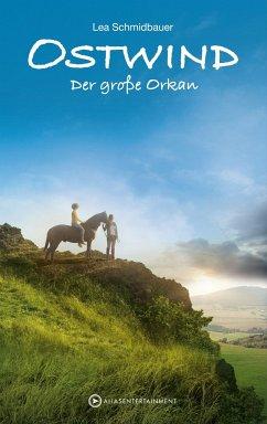 Der große Orkan / Ostwind Bd.6 - Schmidbauer, Lea