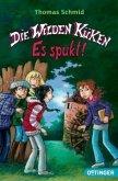 Es spukt! / Die Wilden Küken Bd.4
