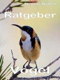 Vögel in der Stadt (eBook, ePUB)