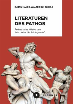Literaturen des Pathos (eBook, PDF)