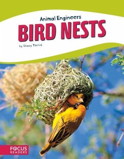 Animal Engineers: Birds Nests