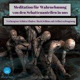 Meditation für Wahrnehmung von den Schattenanteilen in uns (MP3-Download)