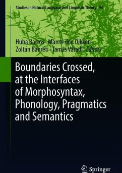 Boundaries Crossed, at the Interfaces of Morpho...