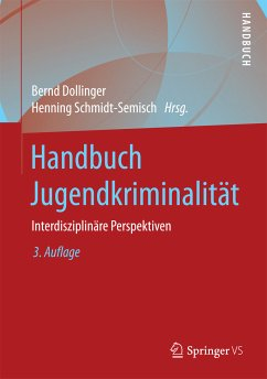 Handbuch Jugendkriminalität (eBook, PDF)