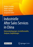 Industrielle After Sales Services in China (eBook, PDF)