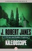 Kaleidoscope (eBook, ePUB)