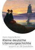 Kleine deutsche Literaturgeschichte (eBook, ePUB)