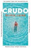 Crudo (eBook, ePUB)