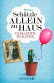 Schätzle allein zu Haus / Pipeline Praetorius Bd.5 (eBook, ePUB)