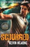 Scourged (eBook, ePUB)