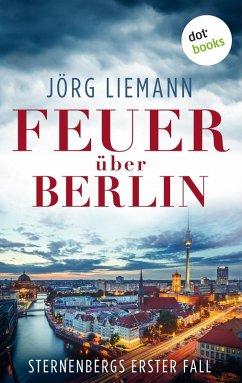Sternenberg und die Spur der Flammen - Der erste Fall (eBook, ePUB) - Liemann, Jörg