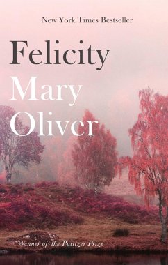 Felicity (eBook, ePUB) - Oliver, Mary