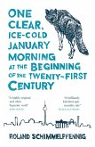 One Clear Ice-cold January Morning at the Beginning of the 21st Century (eBook, ePUB)