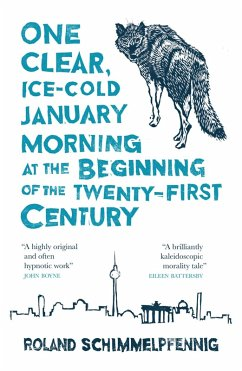 One Clear Ice-cold January Morning at the Beginning of the 21st Century (eBook, ePUB) - Schimmelpfennig, Roland