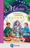 Geschichtenzeit im Zauberwald / Maluna Mondschein Bd.12 (eBook, ePUB)