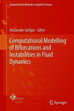 Computational Modelling of Bifurcations and Ins...