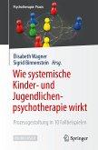 Wie systemische Kinder- und Jugendlichenpsychotherapie wirkt (eBook, PDF)