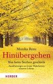 Hinübergehen (eBook, PDF)