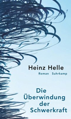 Die Überwindung der Schwerkraft - Helle, Heinz