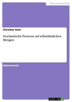 Stochastische Prozesse auf selbstähnlichen Mengen