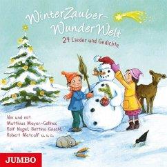 WinterZauberWunderWelt, 1 Audio-CD - Diverse