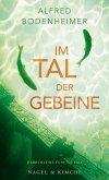 Im Tal der Gebeine / Rabbi Klein Bd.5