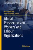 Global Perspectives on Workers' and Labour Organizations (eBook, PDF)