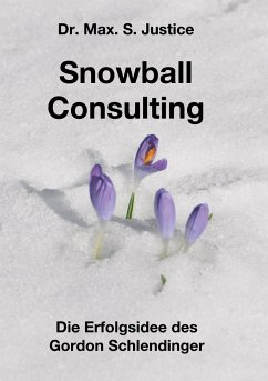Snowball Consulting - Justice, Max. S.