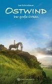 Der große Orkan / Ostwind Bd.6 (eBook, ePUB)