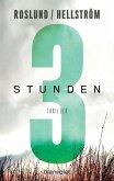 Drei Stunden / Piet Hoffmann Bd.3 (eBook, ePUB)