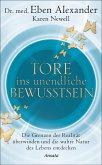 Tore ins unendliche Bewusstsein (eBook, ePUB)