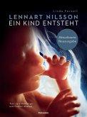 Ein Kind entsteht (eBook, ePUB)