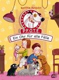 Ein Ohr für alle Fälle / P.F.O.T.E. Bd.2 (eBook, ePUB)