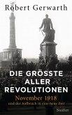 Die größte aller Revolutionen (eBook, ePUB)