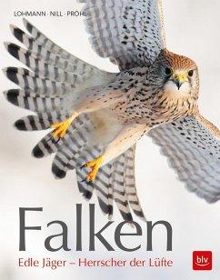 Falken - Lohmann, Michael