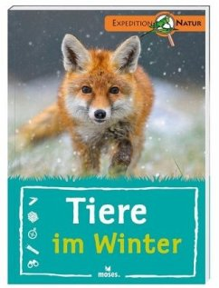Tiere im Winter - Saan, Anita van