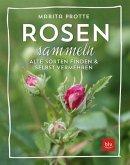 Rosen sammeln