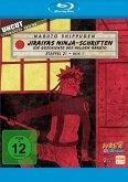 Naruto Shippuden - Die komplette Staffel 21, Box 1 (2 Discs)