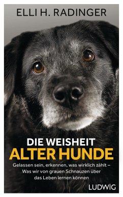 Die Weisheit alter Hunde - Radinger, Elli H.