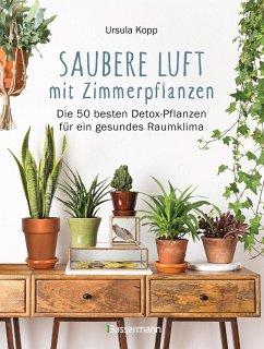 Saubere Luft mit Zimmerpflanzen - Kopp, Ursula