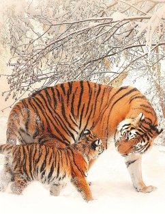 Fantasy Notizbuch 14: Tiger im Schnee - Sternenfeuer, Samuriel