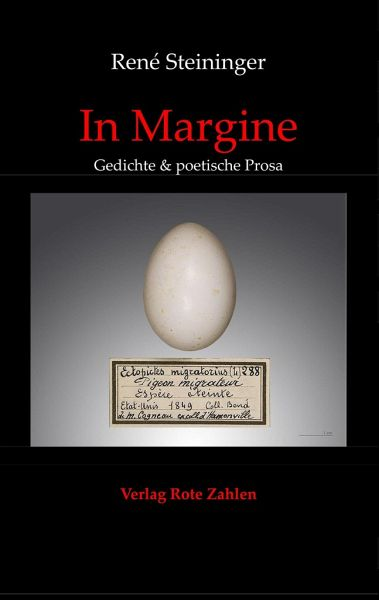 In Margine - Steininger, René
