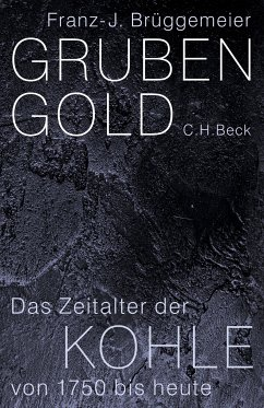 Grubengold (eBook, ePUB) - Brüggemeier, Franz-Josef