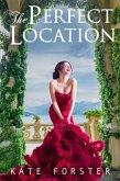 The Perfect Location (eBook, ePUB)