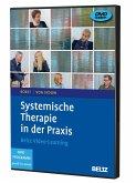 Systemische Therapie in der Praxis, 2 DVDs