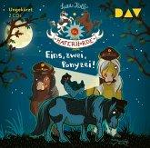 Eins, zwei, Ponyzei! / Die Haferhorde Bd.11 (2 Audio-CDs)