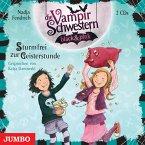 Sturmfrei zur Geisterstunde / Die Vampirschwestern black & pink Bd.3 (2 Audio-CDs)