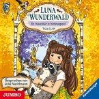 Ein Waschbär in Wohnungsnot / Luna Wunderwald Bd.3 (1 Audio-CD)