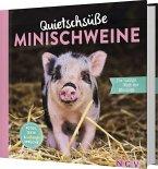 Quietschsüße Minischweine